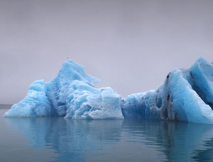 Anthropogene Umweltbelastung